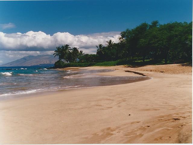 Maui 4