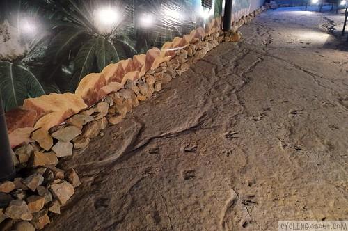 Actual dinosaur footprints in Sataplia national park