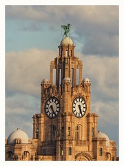 Liverpool's Royal Liver Buildings (with scaffold) HSS