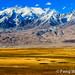 Autumn Prairie On Pamir Plateau by Feng Wei Photography