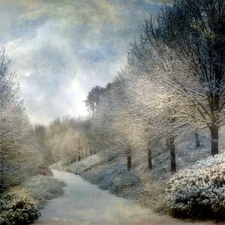 ✿ Snowy landscape ✿