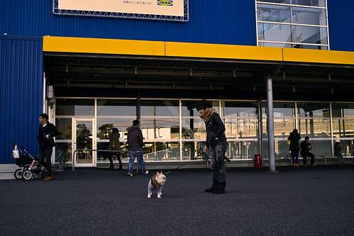 at IKEA