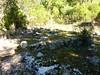 Ancienne bergerie de Sainte-Lucie : ruines probables de la bergerie