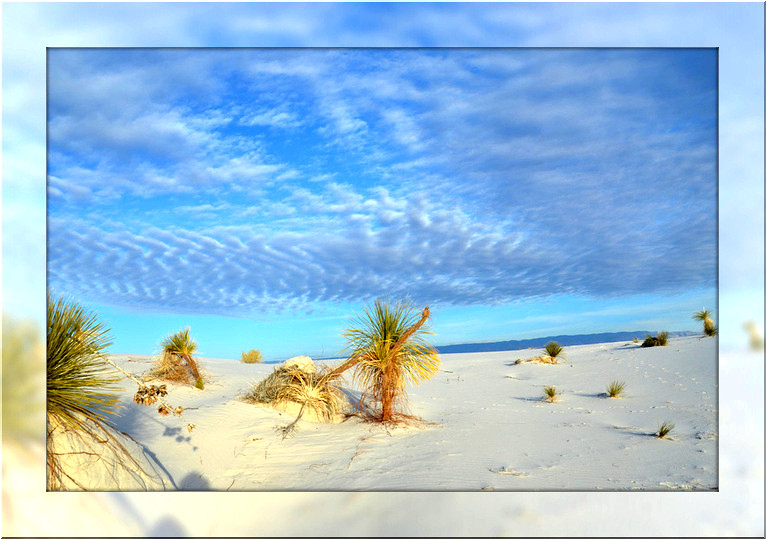 White Sands scene