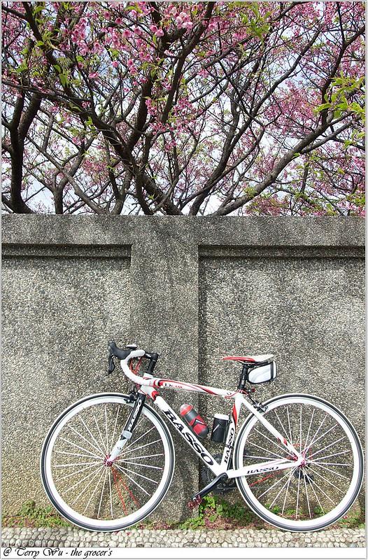 2013-02-03 平菁街-10