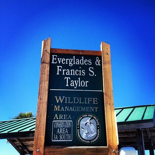 Florida at 59 degrees = perfection. #florida #everglades #igersftl