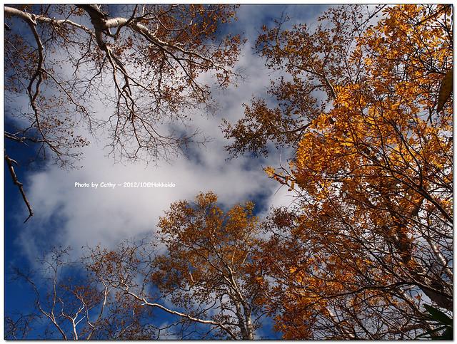 層雲峽-13