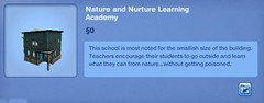 Nature and Nurture Learning Academy