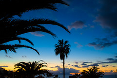 Sunset in West Tenerife - Los Gigantes - By Thomas Tolkien