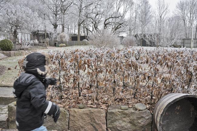 wintergarden 2