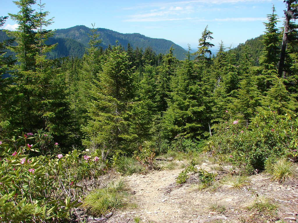 Elkhorn Ridge Trail