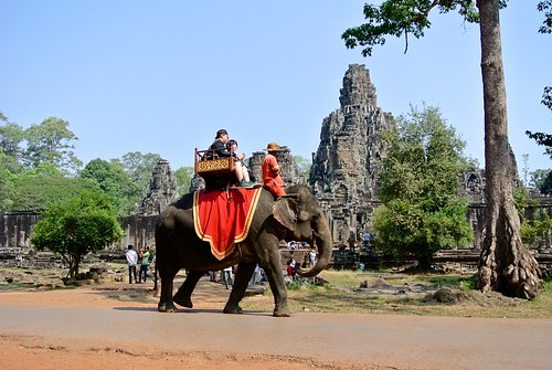 Elephant in Angkor Thomb