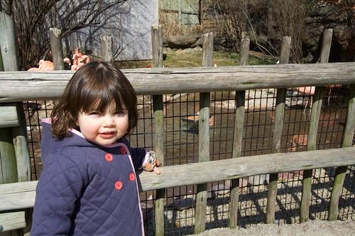 Lydia @ zoo