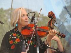 bowed string instrument, violinist, string instrument, musician, violin, viol, viola, music, fiddle, cello, violist, string instrument,