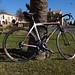 Mein Mietrad für diese Woche (Centurion Gigadrive)