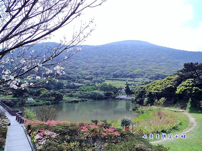 7 大屯自然公園