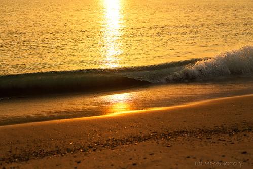 sea reflection japan sunrise spring wave seashore 2013 kochipref