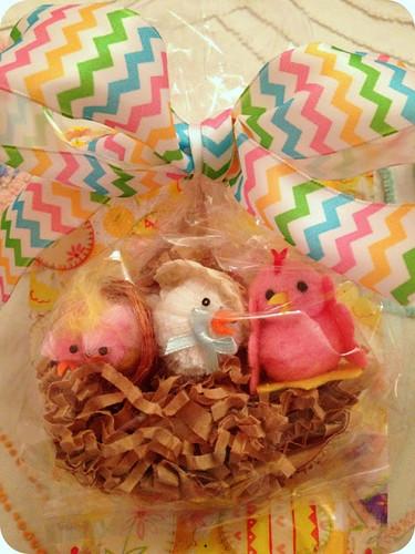 Little chicks Surprise