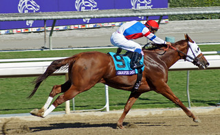 Groupie Doll winning the Breeders Cup Filly & Mare Sprint