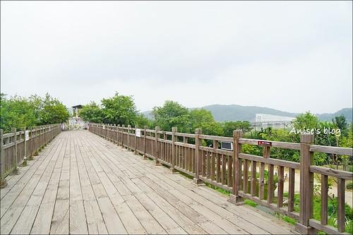 韓國DMZ_005