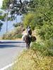 Kreta 2008 065