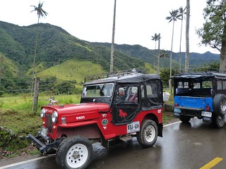 Fotografía de Willys en el Valle de Cocora (Colombia)