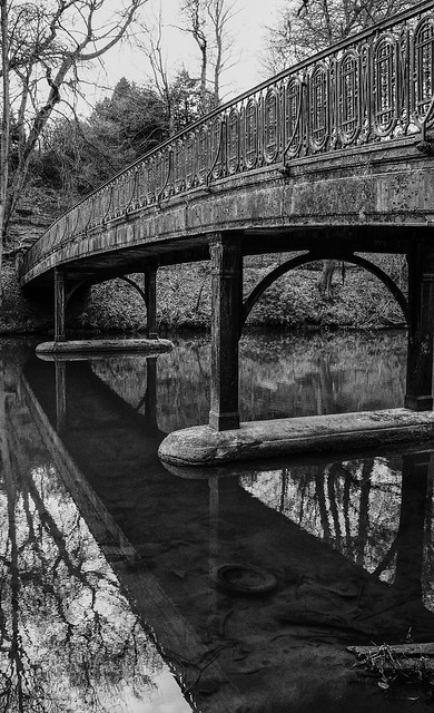 Bridge to Botanics