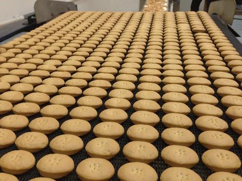 Galletas Gelabert en Porreres: galletas de oli artesanas de Mallorca
