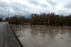 La Moselle - Vue depuis le Pont des Morts