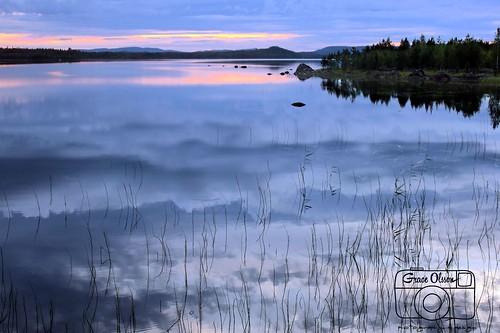 trees sky water sunrise landscape bush scandinavian falunfunäsdalenochnorrland2011juli