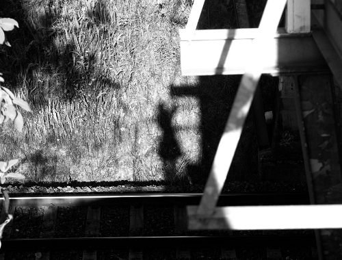 IMG 5938.1 Shadows on the tracks.