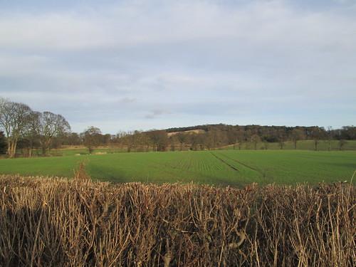 A field near Dalmeny Scotland