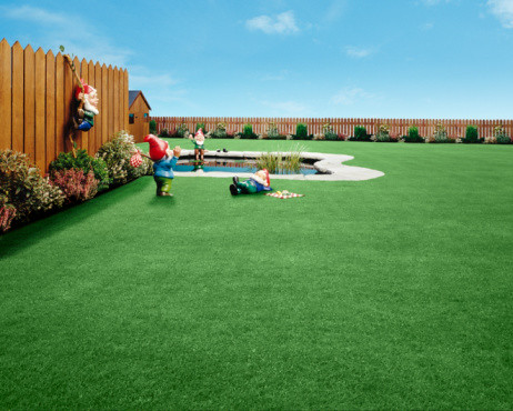 You too Can Have a Green Lawn!