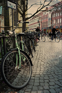 bicycles and fence
