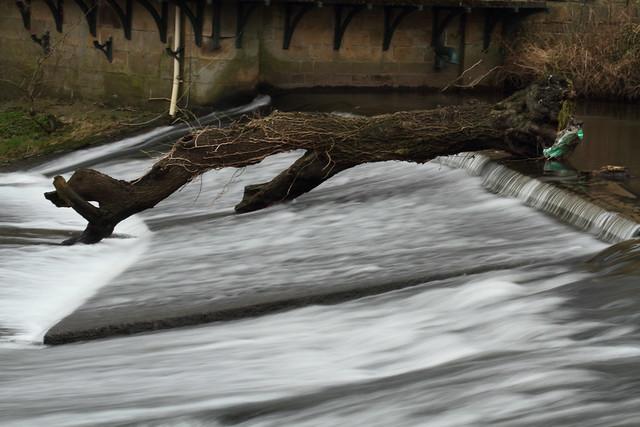 Weir at Robert's Park