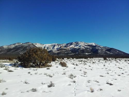 snow bluesky mthamilton snowscene