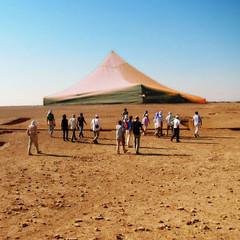 steppe(0.0), erg(0.0), pyramid(0.0), plateau(0.0), camel(0.0), camel-like mammal(0.0), sand(1.0), plain(1.0), aeolian landform(1.0), natural environment(1.0), desert(1.0), landscape(1.0), wadi(1.0),