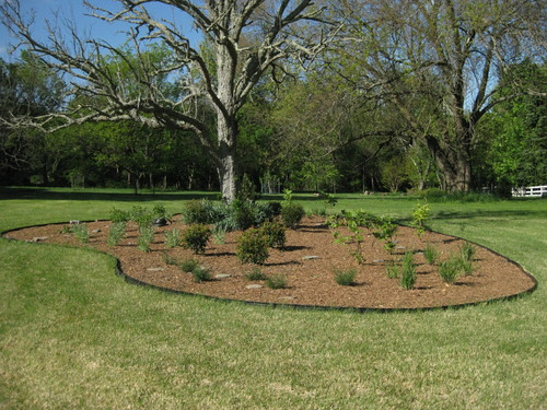 Photo set of Conservation Landscaping