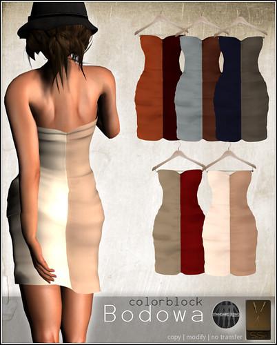 SYSY's-Poster-Bodowa-Colorcombis