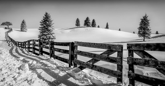 Winter @ Escarpment Road Caledon, Ontario