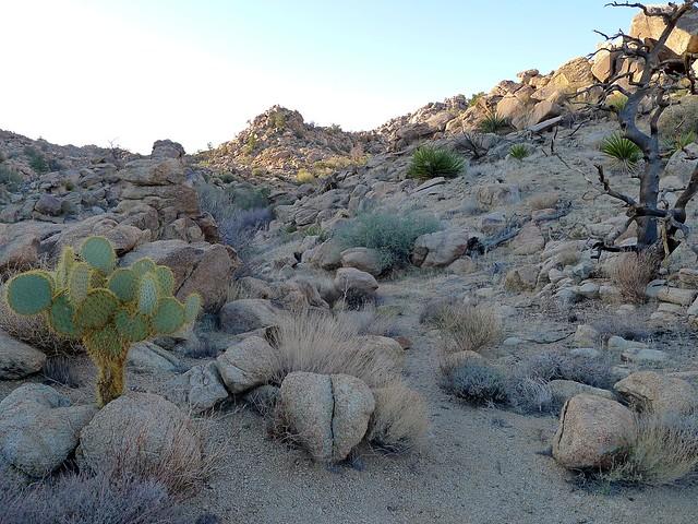 Johnny Lange Canyon