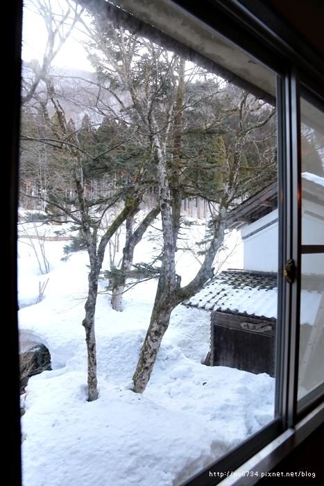20130306_ToyamaJapan_1661 F