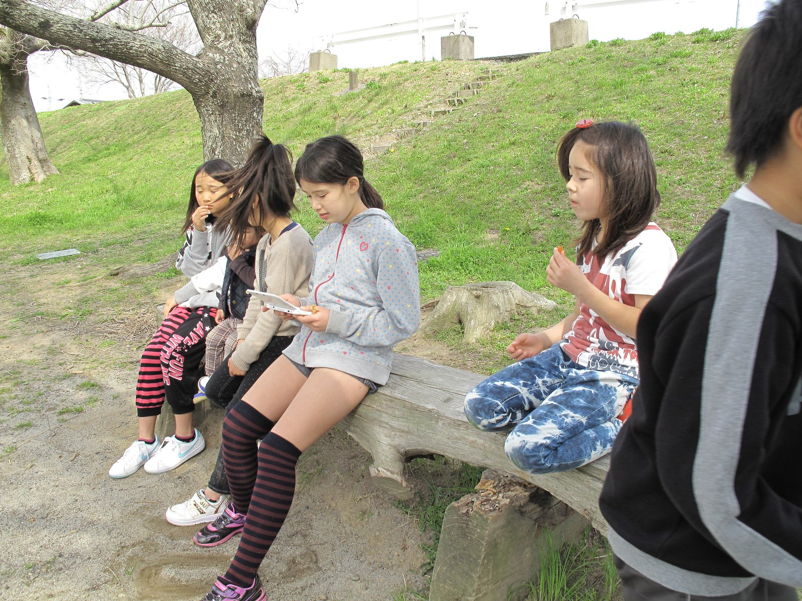 小 学 生 と S E X が し た い 4 8YouTube動画>23本 ->画像>1329枚