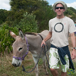 Dan with his Donkey - Farm Near Raglan, New Zealand