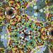 Kaleidoscope by Wozza_NZ