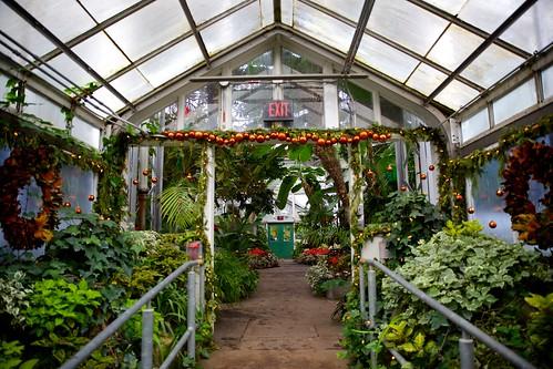 Festive Greenhouse