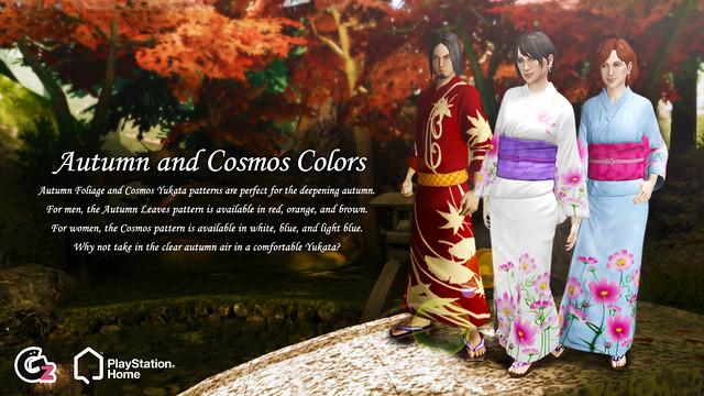 20130109_SCEA_Autumn&Cosmos_blog