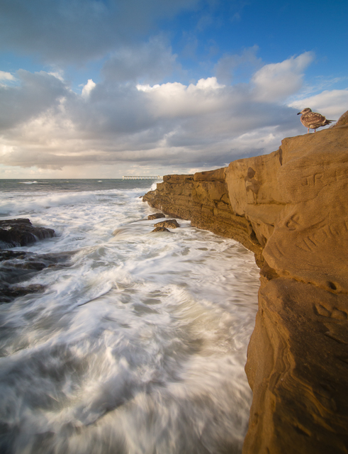 Sunset Cliffs at Sunset 10613 © Michael Klayman-001