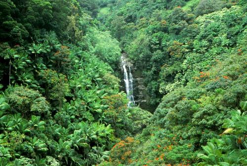 IMG_00726_Kahuna_Falls