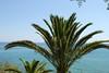 Kreta 2011-1 054
